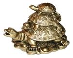 "Черепаха ""Три поколения"""