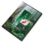 "DVD ""Магия леса"""