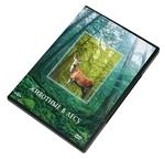 """DVD """"Животные в лесу"""""""