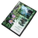 """DVD """"Дикая природа Аляски"""""""