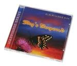 """CD """"Skys Beyond"""""""