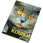 """DVD """"BBC: Загадочные кошки"""""""