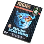 """DVD """"BBC: Животные: взгляд изнутри"""""""