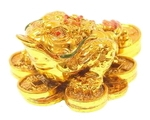 Золотая трехлапая жаба