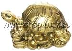 Черепаха на деньгах (маленькая)