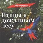 "CD ""Птицы в дождливом лесу"""