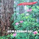 "CD ""Дождливый лес"""