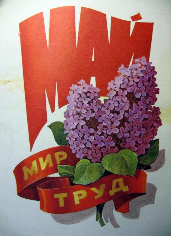 цветок, листок, букет, сирень, лента