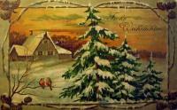 снег, дерево, дом, ель, птица, шишка, небо, окно