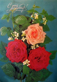цветок, роза, листок, букет, веточка
