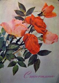 цветок, листок, букет, роза