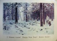 дерево, снег, ель