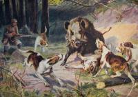 собака, свинья, человек, оружие, дерево, трава, мужчина