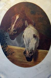 конь, забор, веточка, листок