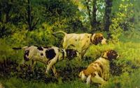 собака, трава, дерево