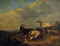 овца, небо, облако, дерево, трава