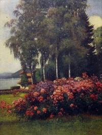 дерево, цветок, трава, небо, дом, облако, береза