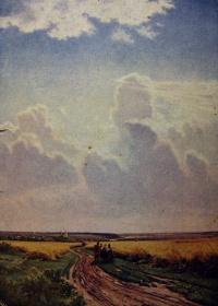 поле, дорога, небо, облако, человек, трава, колос