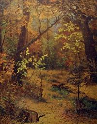 дерево, пень, трава, лес