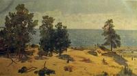дерево, вода, небо, песок, море, берег, облако, ель