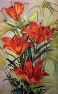 цветок, лилия, колос, букет, листок