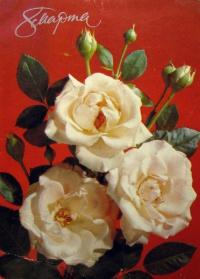 цветок, бутон, роза, букет, листок