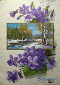 цветок, дерево, снег, листок, береза, вода, ель