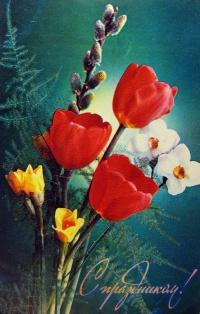 цветок, веточка, тюльпан, нарцисс