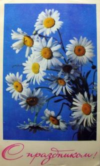 цветок, ромашка, небо, букет