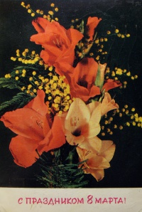 цветок, веточка, листок, мимоза, бутон
