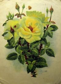 цветок, бутон, роза, листок, букет