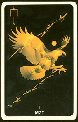 Crows Magick