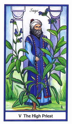 The High Priest - Sage