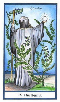 The Hermit - Licorice