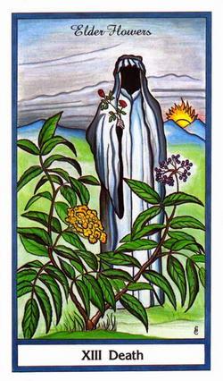 Death - Elder Flowers